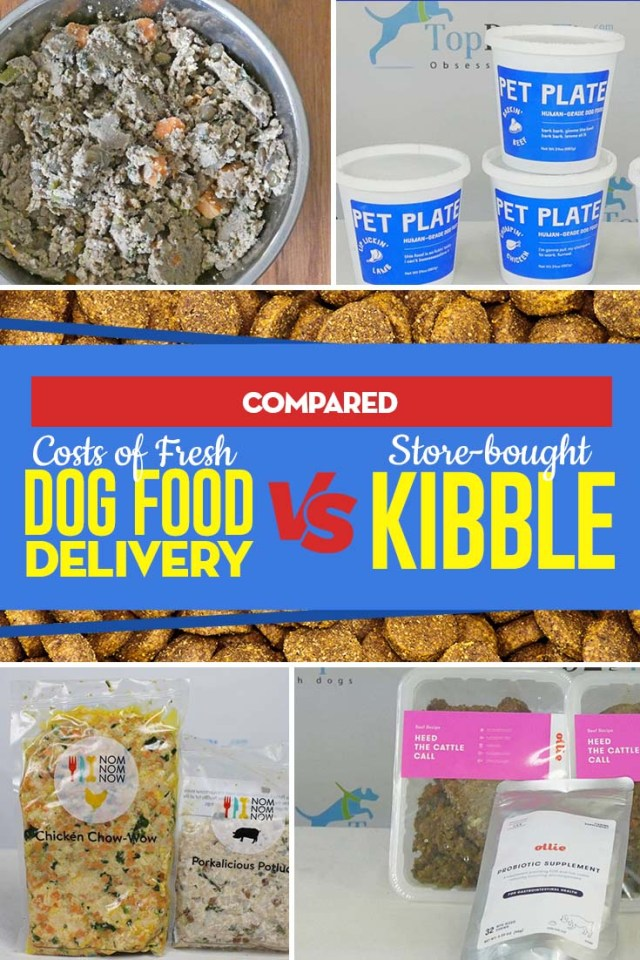 We Are Comparing Costs of Fresh Dog Food Delivery vs. Store-bought Kibble
