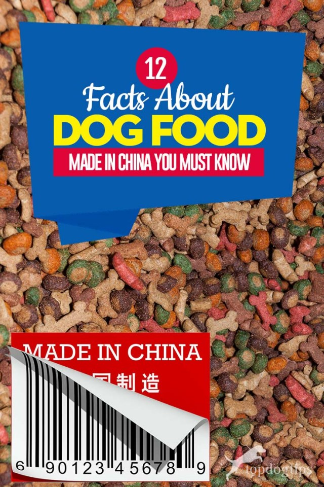 Top 12 Facts About Dog Food Made in China