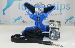dog walking package giveaway