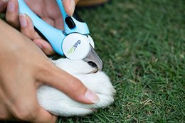 Dog Nail Trimming Clippers by DakPets
