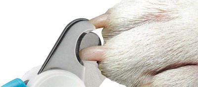 How sensor prevents cutting in dog nail quick