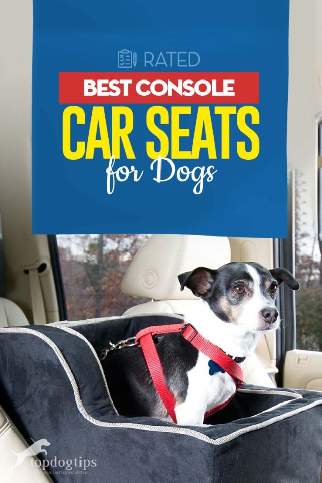 Top Best Console Dog Car Seat Choices