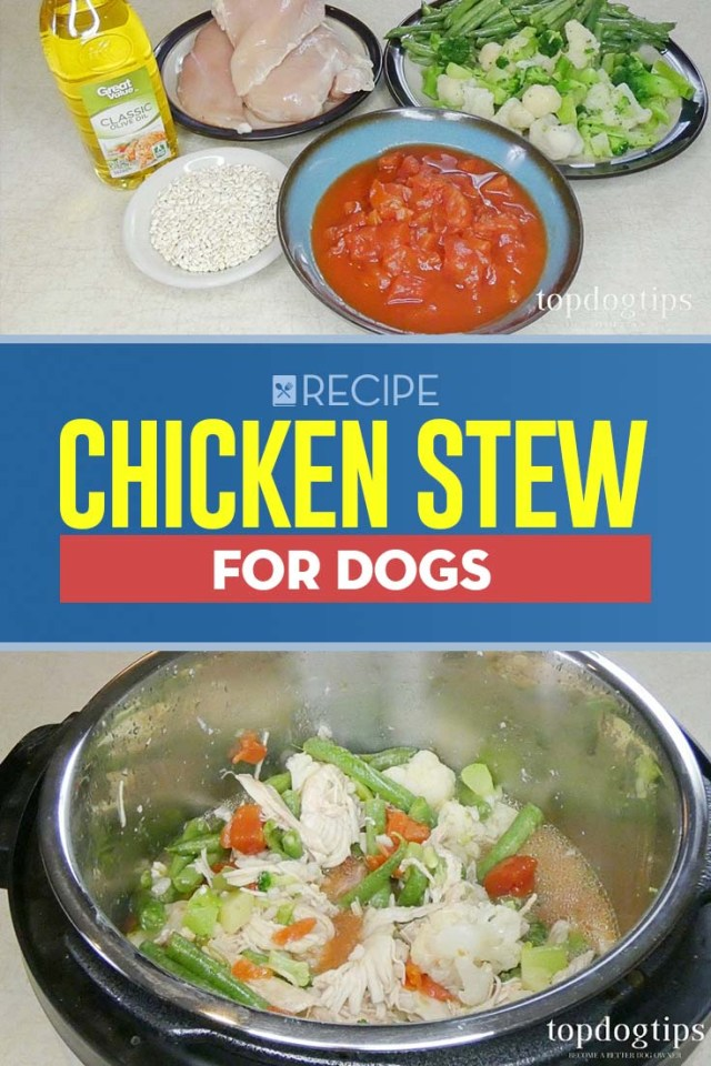 Recipe of Chicken Stew for Dogs