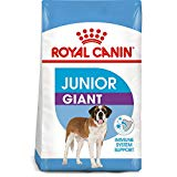 Royal Canin Junior GIANT Formula