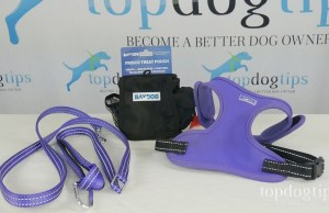 Dog Walking Gear Giveaway