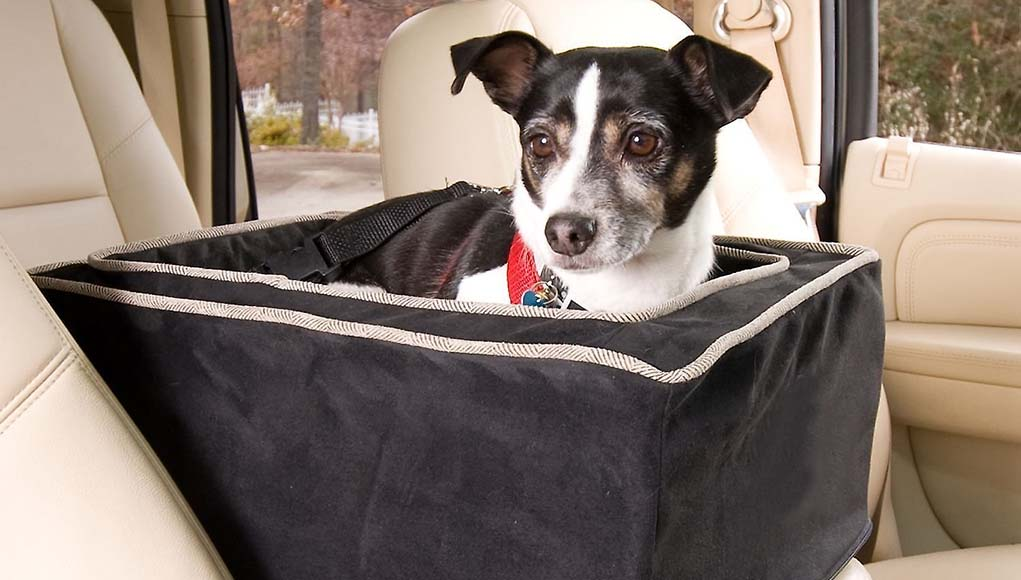 The Best Console Dog Car Seat Choices