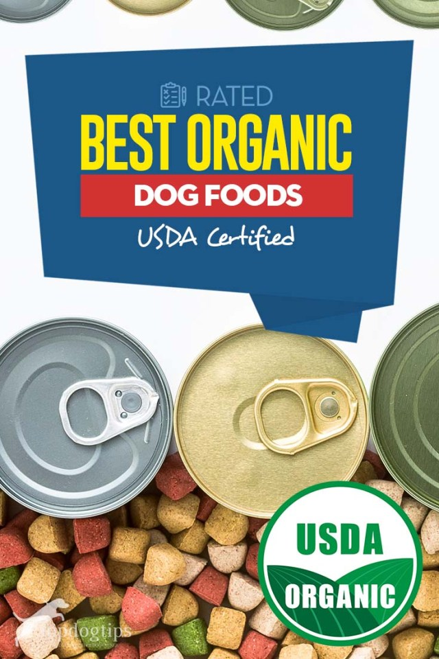 Top Rated Best Organic Dog Food Brands (USDA Certified)