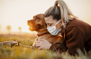 Tips to Keep Dogs Safe During COVID-19 Pandemic