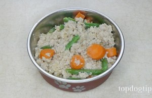 Homemade food for diabetic dogs recipe