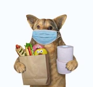 What Pet Supplies to Buy During Coronavirus