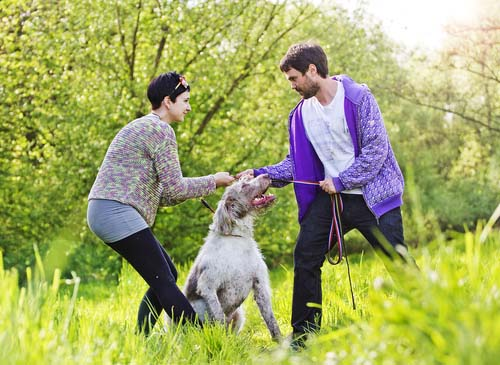 How will we share the responsibility of dog care