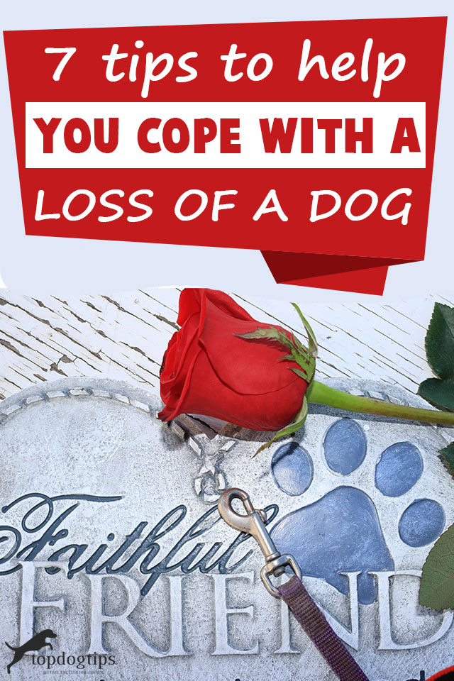 Tips On How To Cope With A Loss Of A Dog