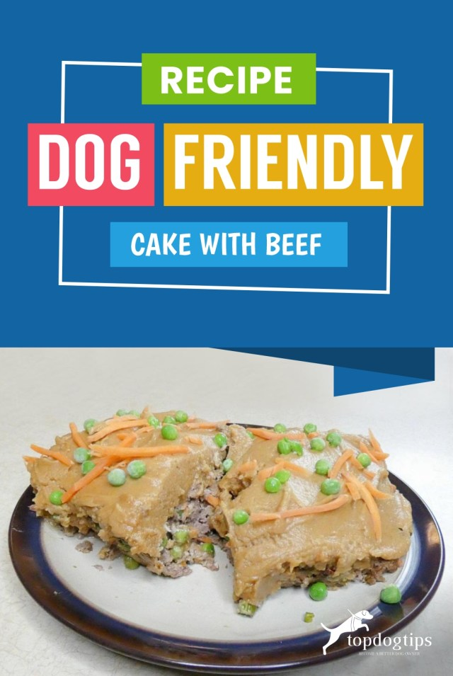 Recipe- Dog Friendly Cake with Beef