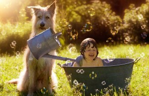 9 Tips for Introducing Toddlers to Dogs