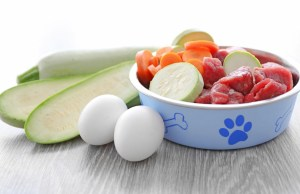 Healthy Raw Diet for Dogs
