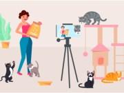 creating pet videos