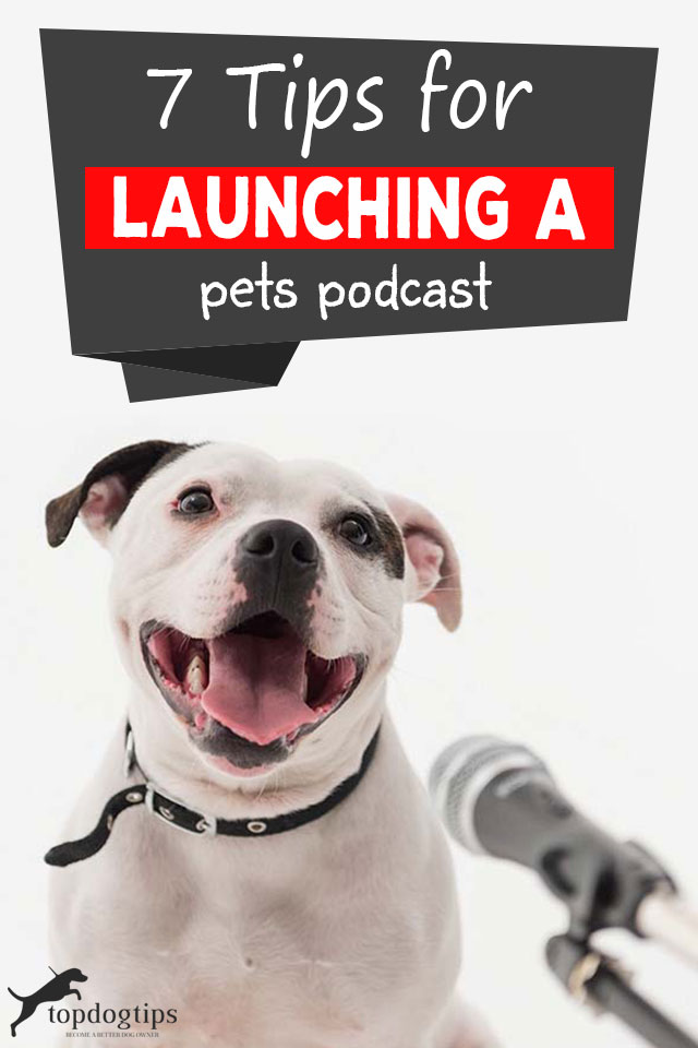 Tips For Launching A Pets Podcast
