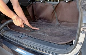 how to get dog hair out of car seats