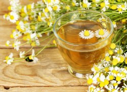 herbal remedies for dogs Chamomile
