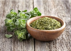 herbal remedies for dogs Oregano