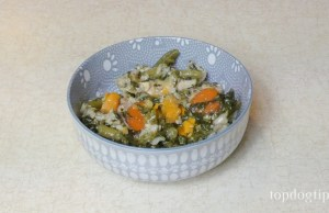 slow cooker chicken dog food