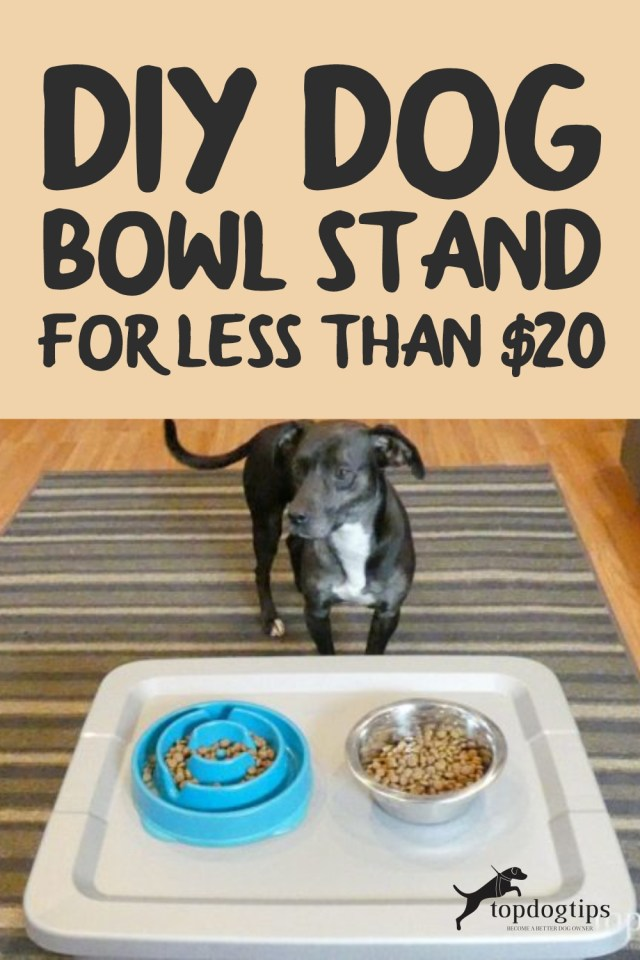 DIY Dog Bowl Stand for Less Than -20