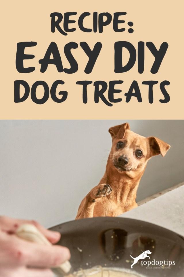 Recipe- Easy DIY Dog Treats