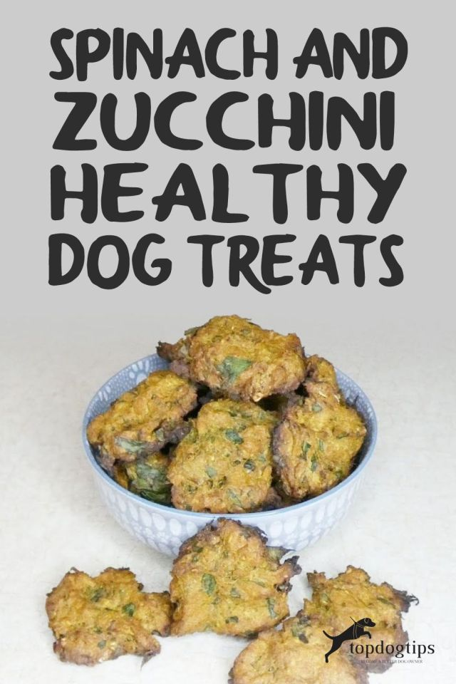 Spinach and Zucchini Healthy Dog Treats