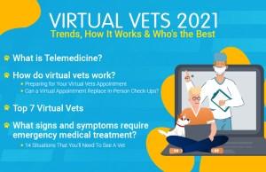 Virtual Vets 2021 banner