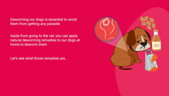 Natural Deworming for Dogs