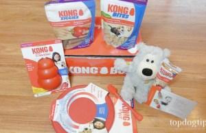 KONG Box Review