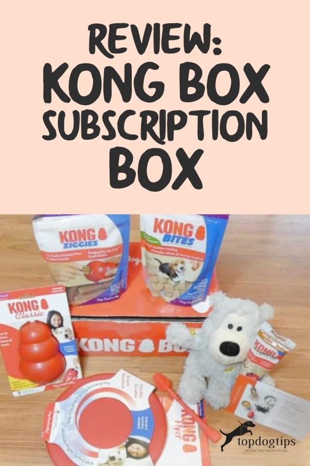 KONG Box Subscription