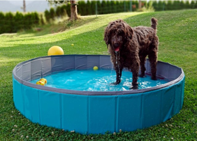 Foldable pool with easy entrance