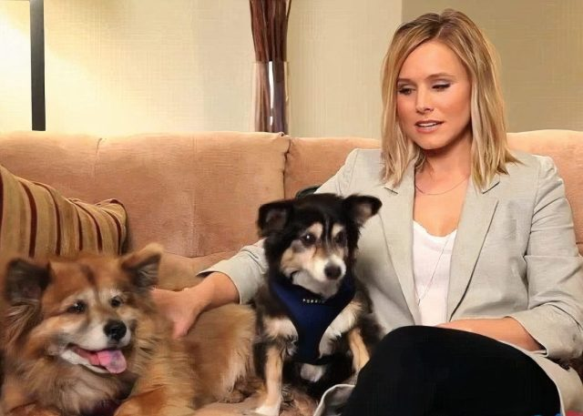 Kristen Bell and Dogs Lola and Mr. Shakes