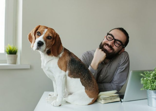 What Should I Write on My Pet's Trust or Agreement?