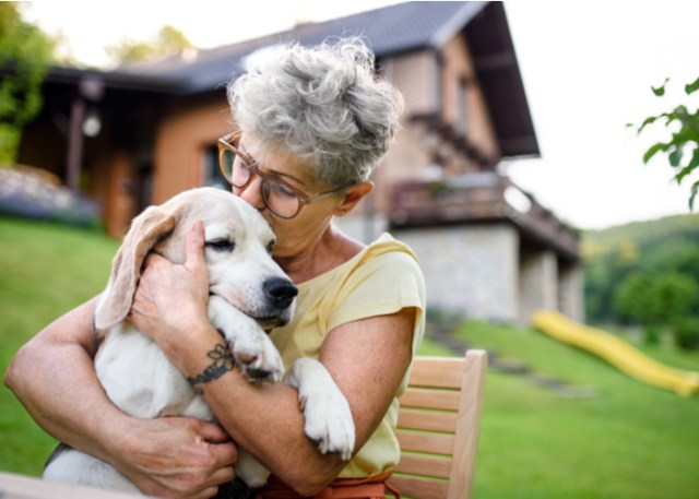 Health benefits of owning a dog- healthier heart
