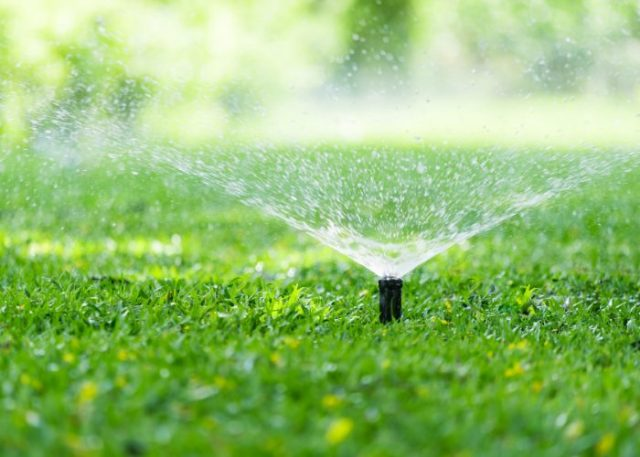 2. Garden and Lawn Sprinklers