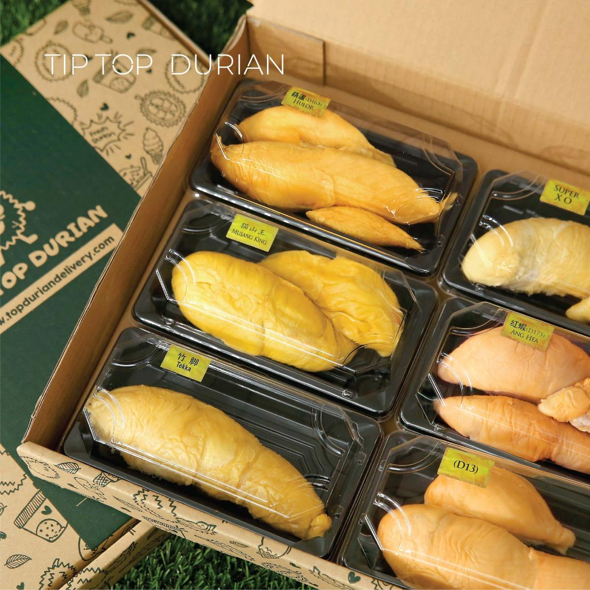 Musang King 6 in 1 Crazy Combo   Tip Top Durian Delivery   Malaysia Top Fresh Durian Online Delivery