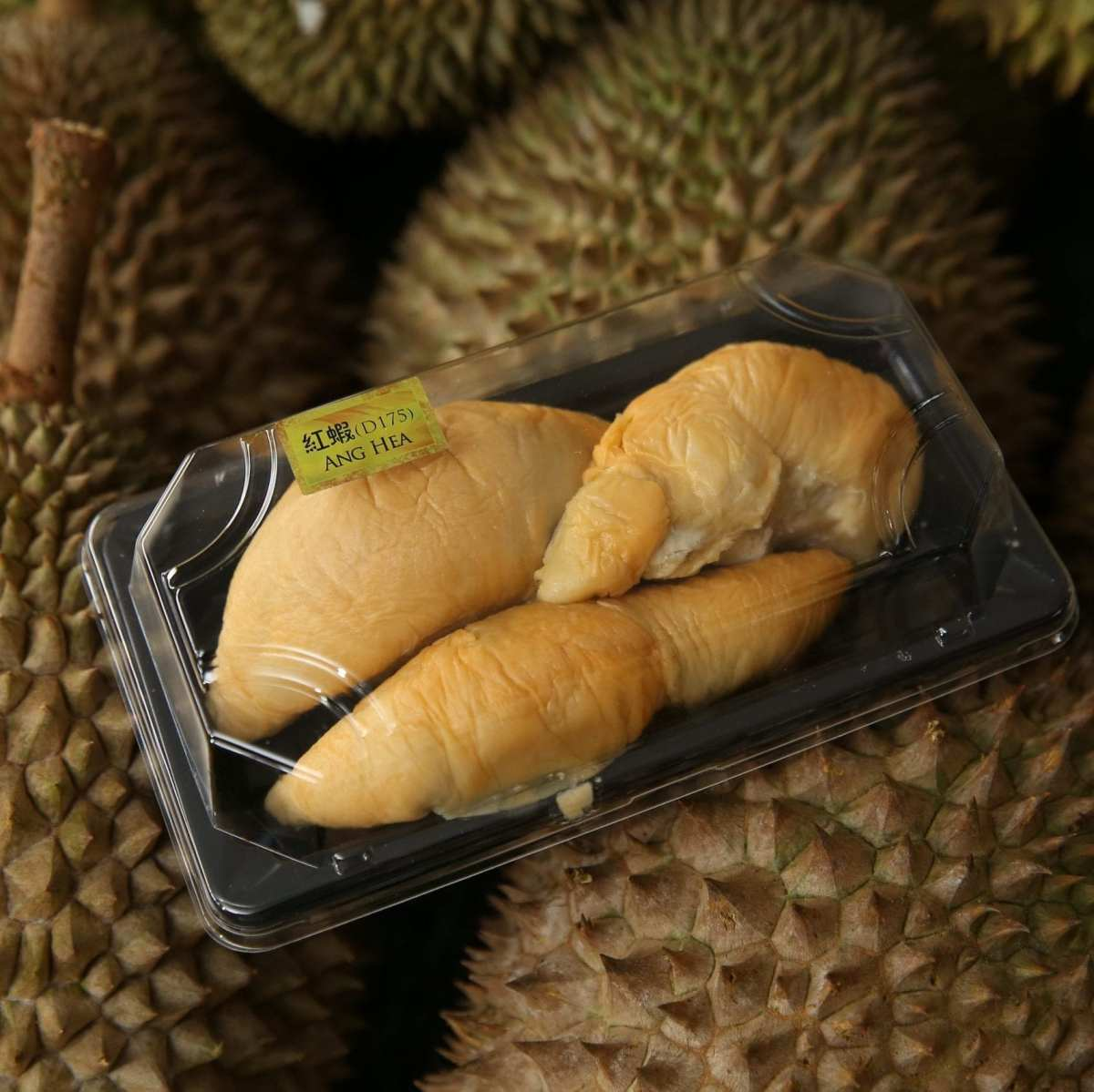 Red Prawn D175   Musang King   D24   Fresh Durian   Durian Ice Cream   Durian Mochi   Durian Crepe Cake   Durian Cheesecake   Tip Top Durian Delivery   Malaysia Top Fresh Durian Online Delivery
