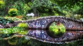 Fondos de pantalla inspirados en la naturaleza puente rio