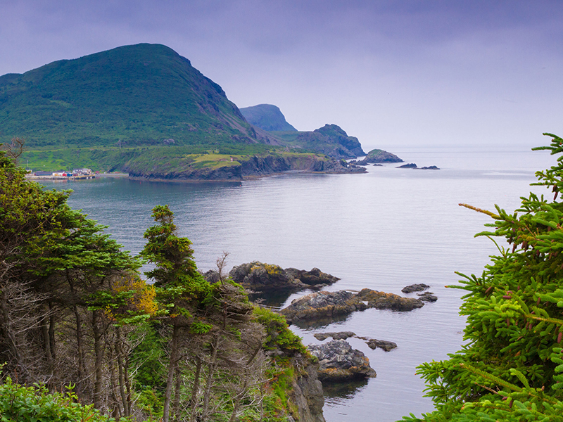 Newfoundland - Coastline - Feature