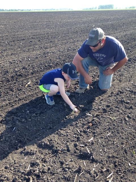 Haseley - Topflight Grain Kids 2017
