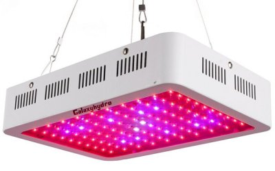 GalaxyHydro LED Grow Lights Review