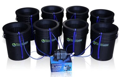 PowerGrow Deep Water Culture Hydroponic Bucket Kit Review
