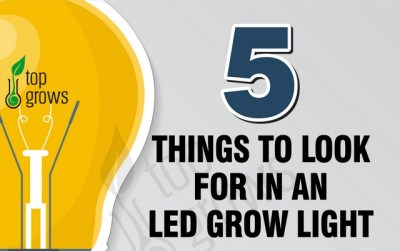 5 Things to Look for in an Led Grow Light – Read Before Buying!