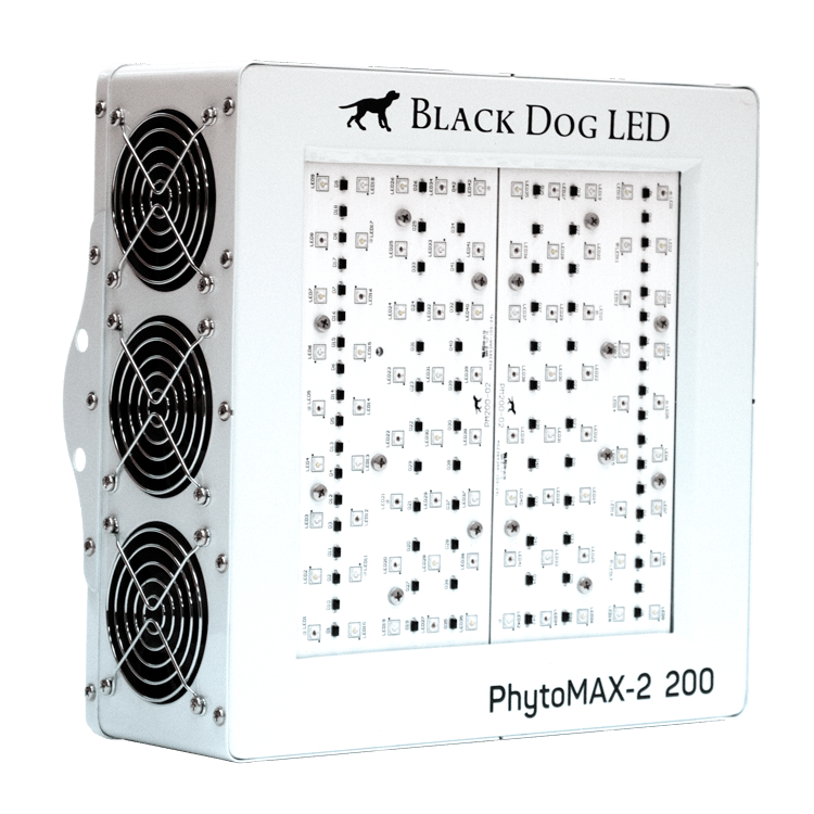 Black Dog LED PhytoMAX Review - Best Lights for Growing Weed