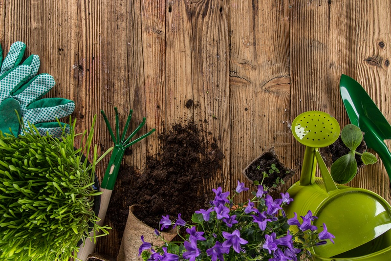 All You Need To Know About Important Garden Supplies