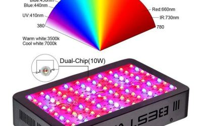 Bestva Led Grow Light Review – Great Market Choice