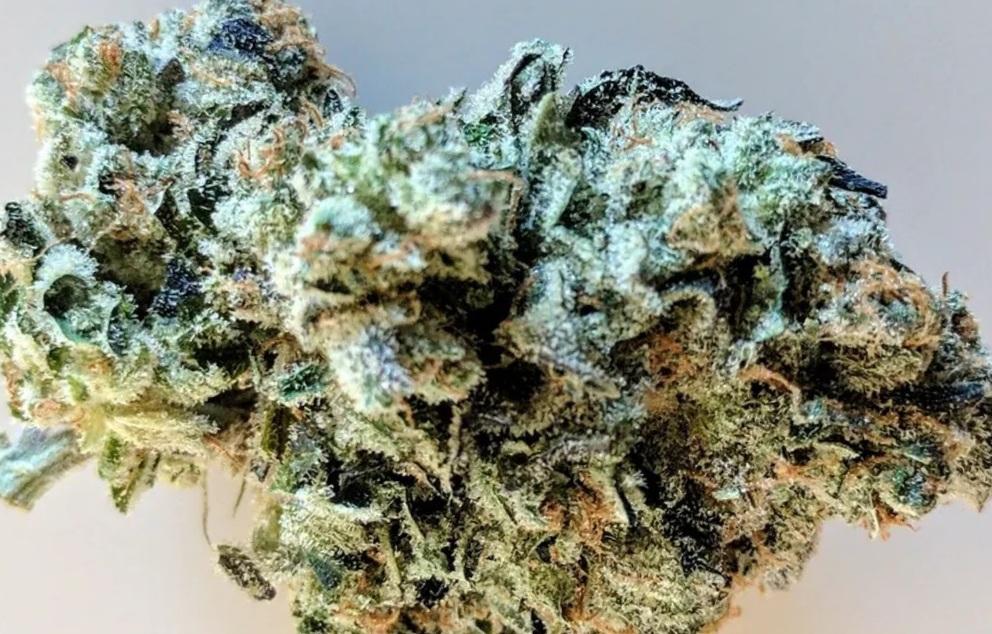 best hybrid strain