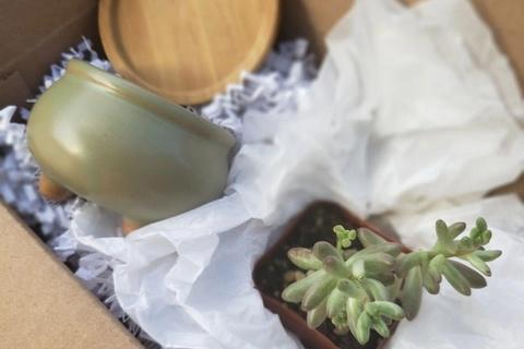 Adopt a Plant Box